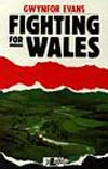 Fighting for Wales