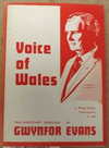Voice of Wales, Gwynfor Evans