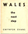Wales the Next Step